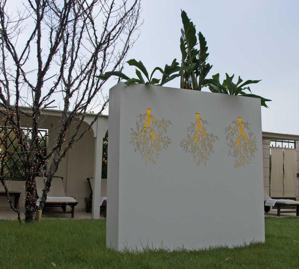 Mizizi planter